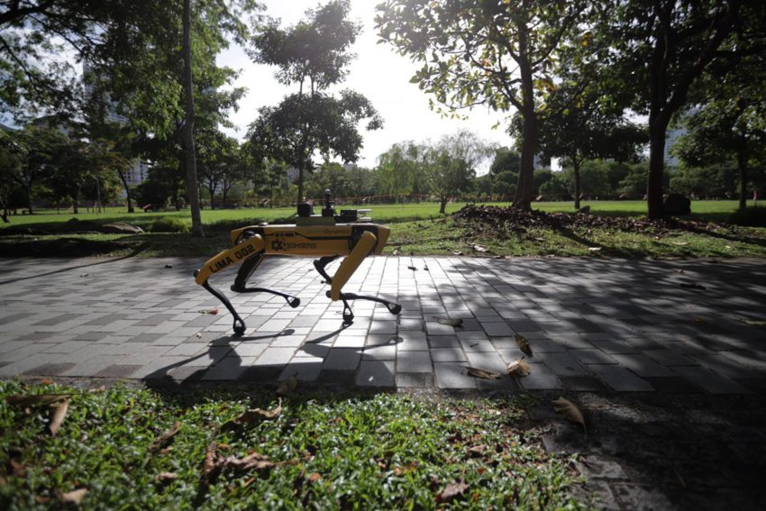 photo6172332655845157486 850x567 - Robot reminds visitors of safe distancing measures in Bishan-Ang Mo Kio Park